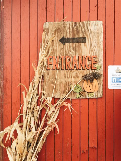 Aaron, the twins found a way out of this corn maze